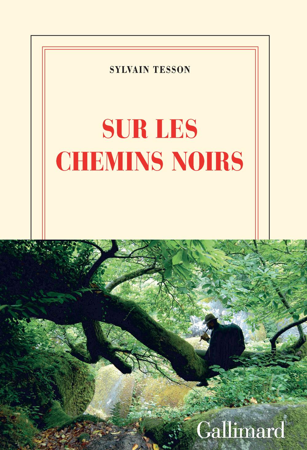 Sur les chemins noirs | Tesson, Sylvain