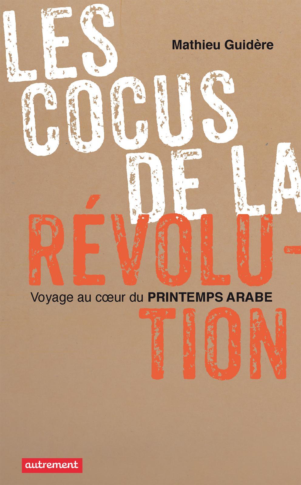 Les cocus de la révolution, VOYAGE AU COEUR DU PRINTEMPS ARABE