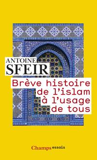 Brève histoire de l'islam à...