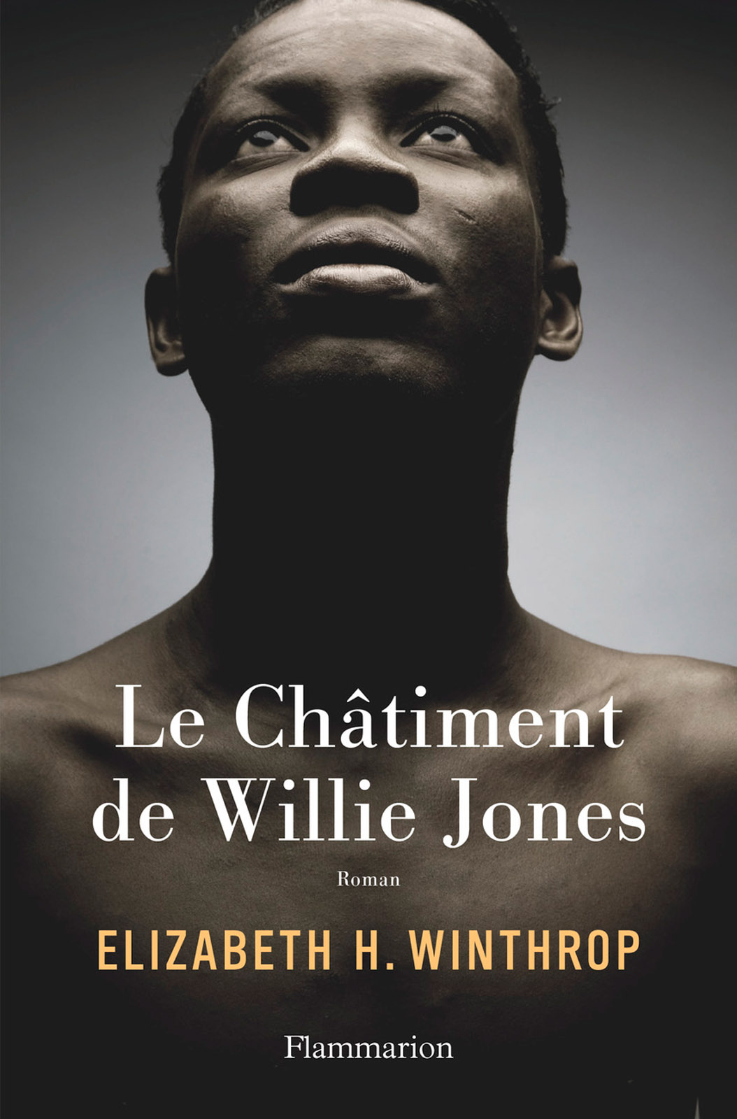 Le Châtiment de Willie Jones | Winthrop, Elizabeth H.
