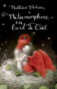 Métamorphose en bord de ciel | Malzieu, Mathias. Auteur