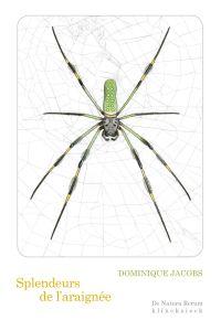 Splendeurs de l'araignée