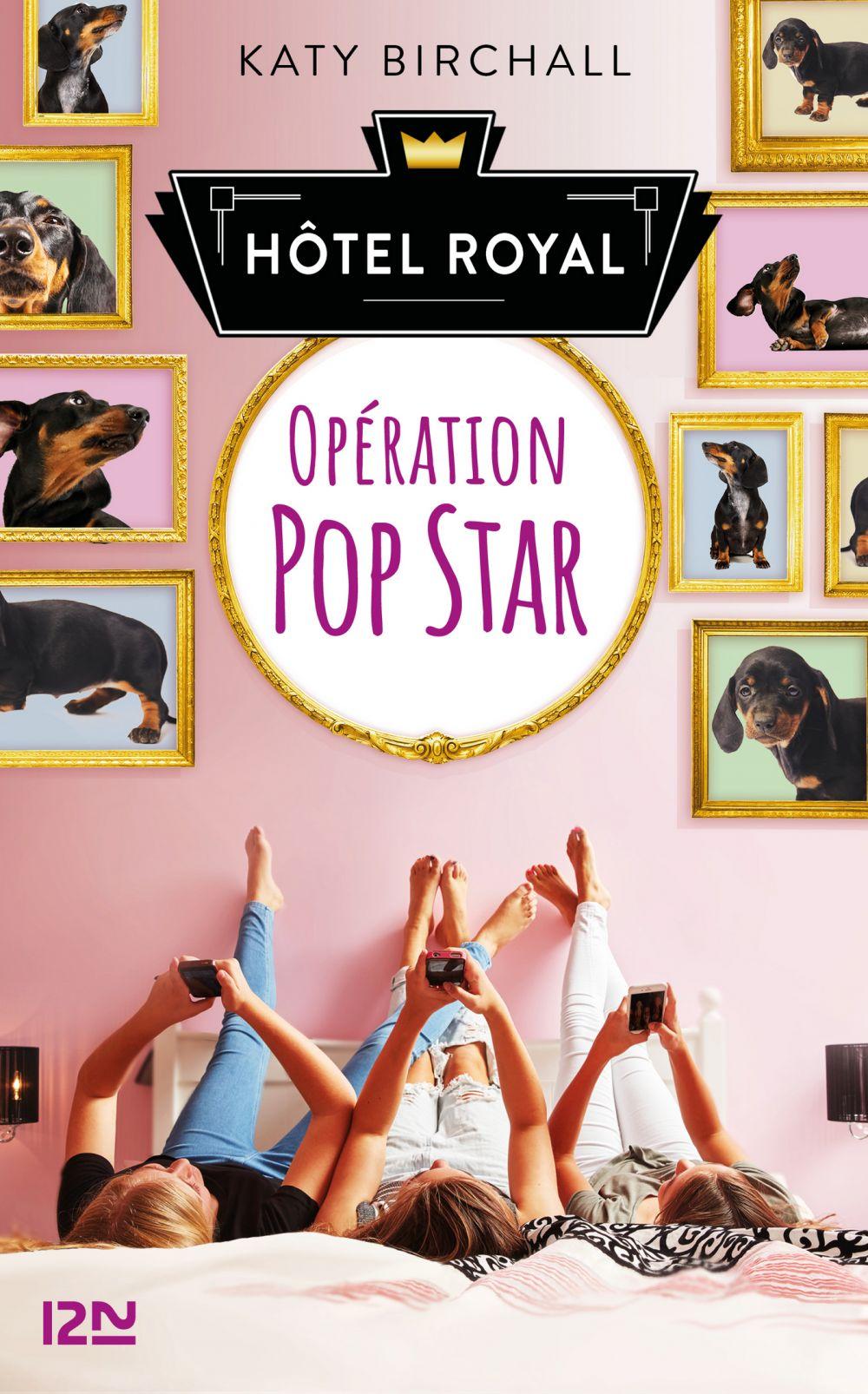 Hôtel Royal - tome 1 : Opération popstar  