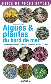 Algues & plantes du bord de mer