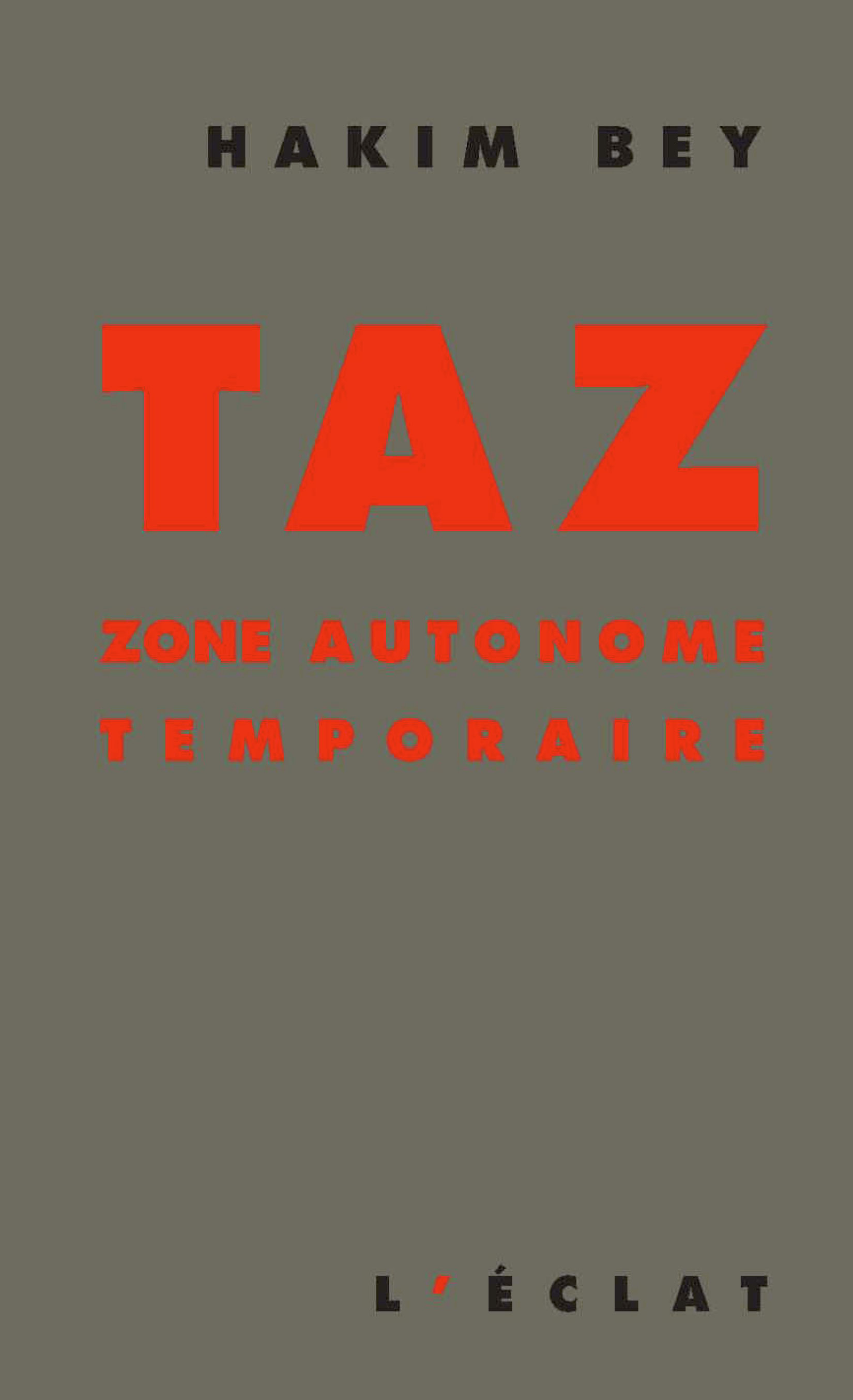 TAZ, Zone autonome temporaire