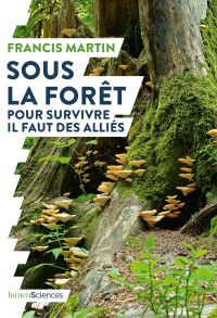 Sous la forêt