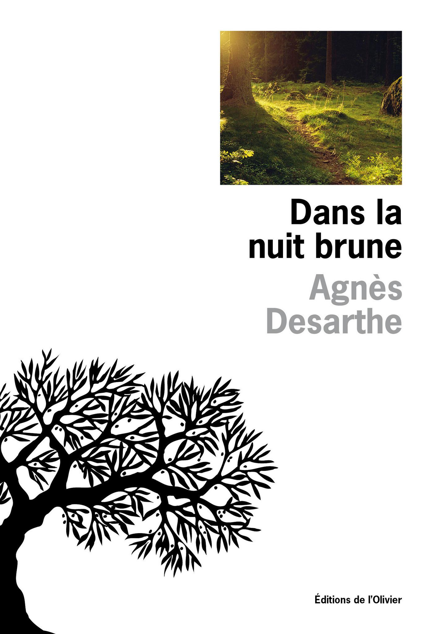 Dans la nuit brune | Desarthe, Agnès