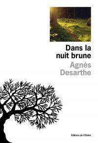 Dans la nuit brune | Desarthe, Agnès. Auteur