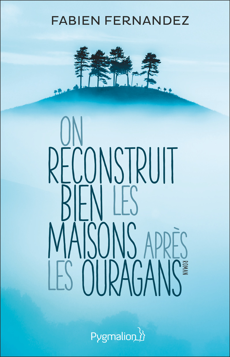 On reconstruit bien les mai...