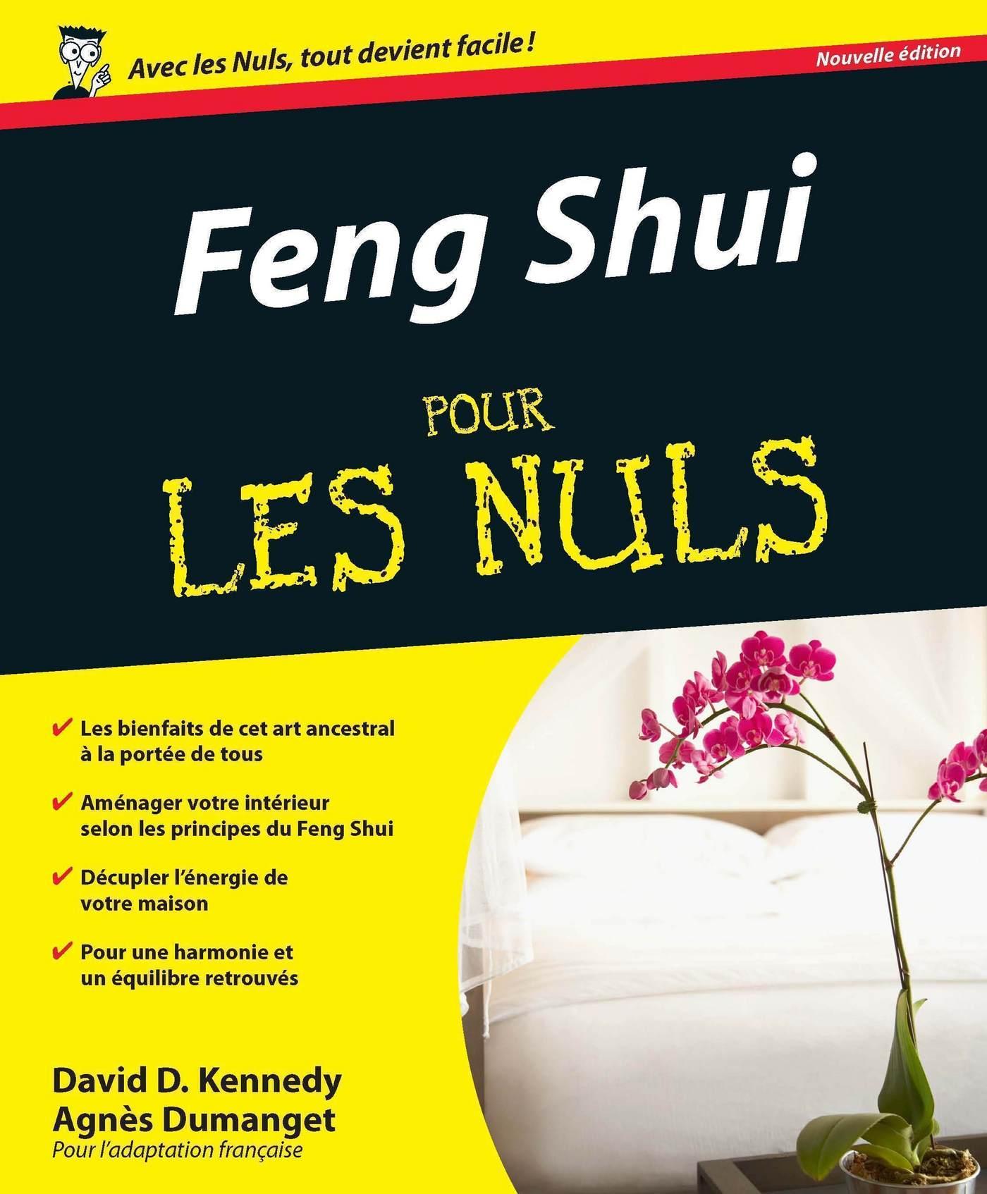Feng Shui Pour les Nuls | DUMANGET, Agnès