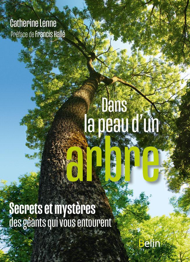 Dans la peau d'un arbre. Secrets et mystères des géants qui vous entourent   Lenne, Catherine. Auteur