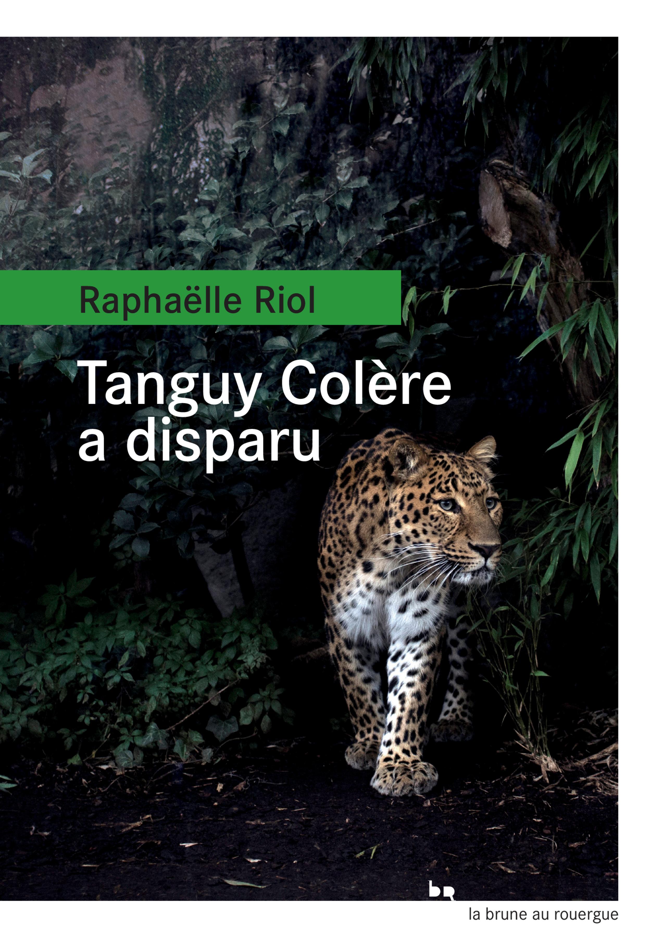 Tanguy Colère a disparu | Riol, Raphaëlle