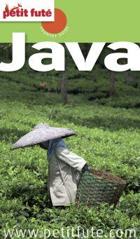 Java 2013 Petit Futé