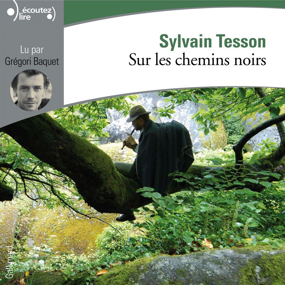 Sur les chemins noirs | Tesson, Sylvain. Auteur