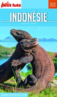 Image de couverture (INDONÉSIE 2019/2020 Petit Futé)