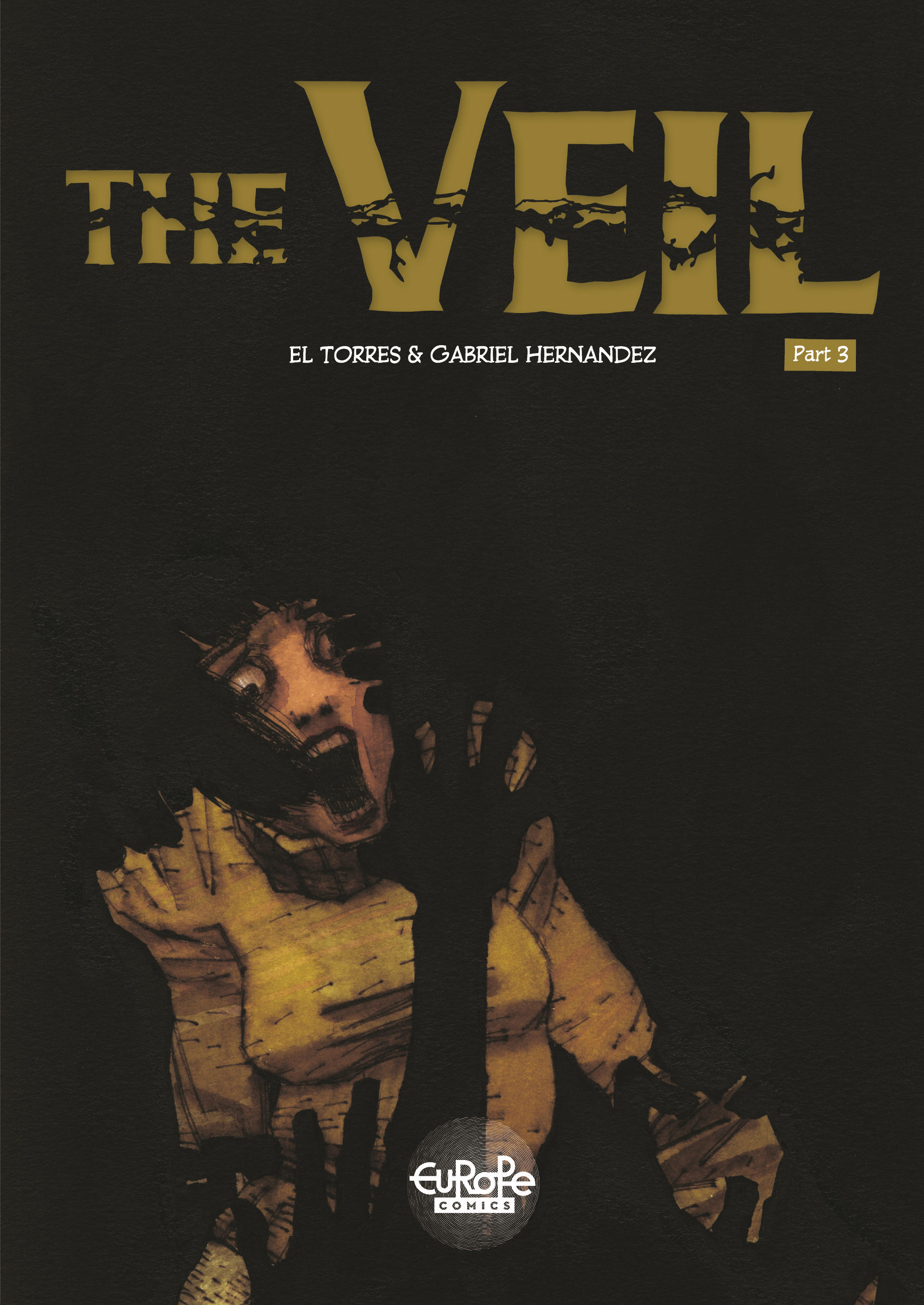 Vignette du livre The Veil - Volume 3