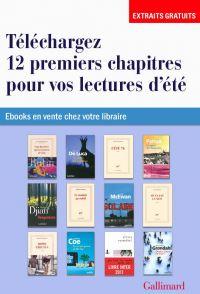 EXTRAITS - 12 romans pour v...