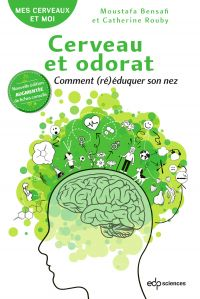 Cerveau et odorat Nouvelle ...