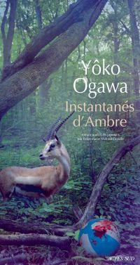 Instantanés d'Ambre | Ogawa, Yôko. Auteur