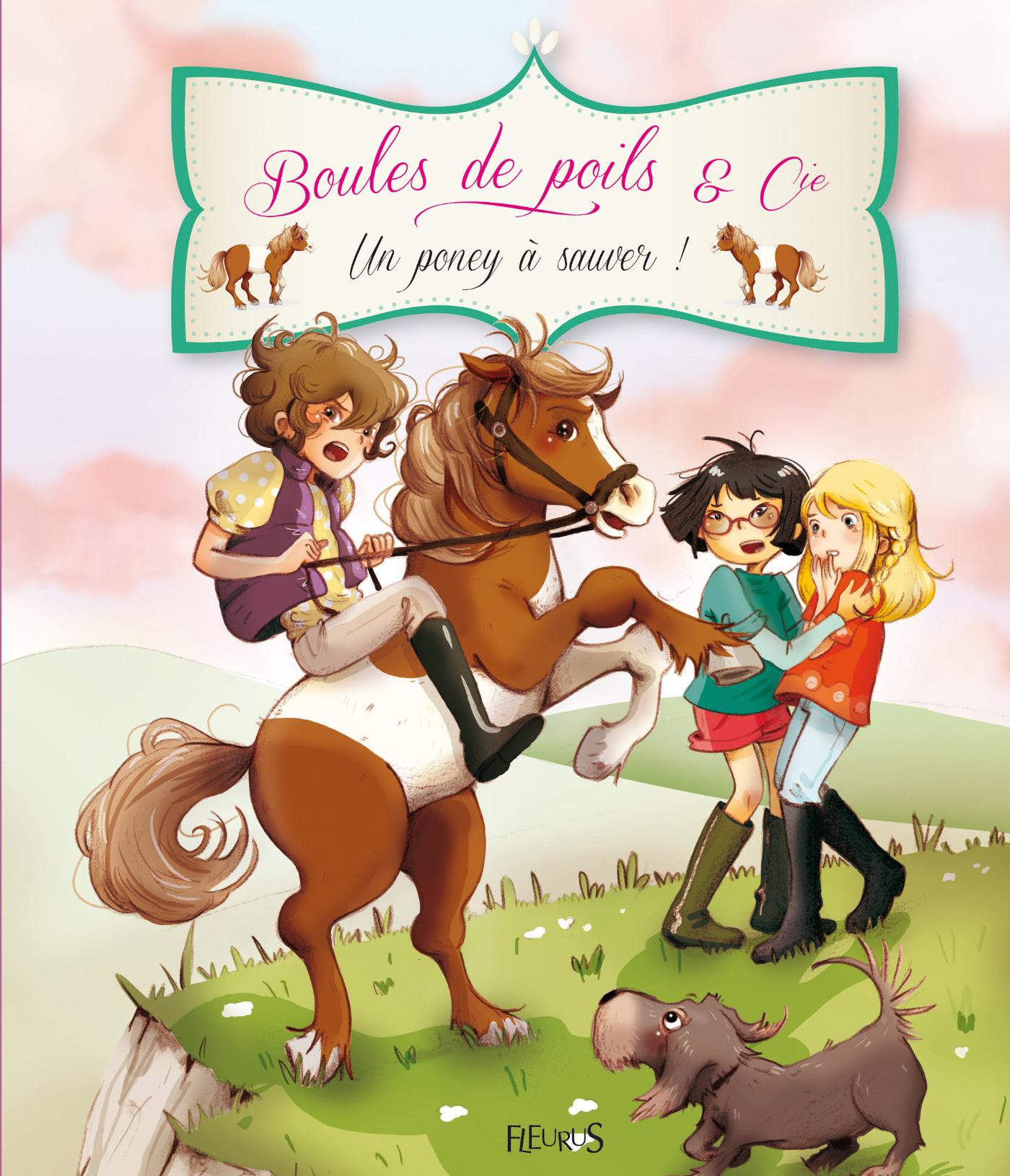 Vignette du livre Boules de poils & Cie: Un poney à sauver!