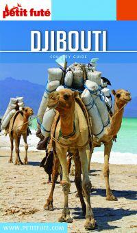 Image de couverture (DJIBOUTI 2020/2021 Petit Futé)