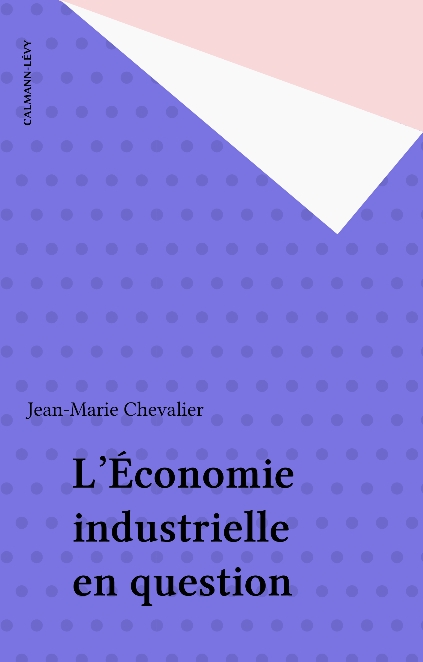 L'Économie industrielle en question