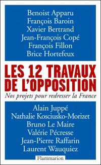 Les 12 travaux de l'opposition