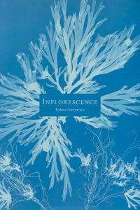 Inflorescence | Antonescu, Raluca (1976-....). Auteur