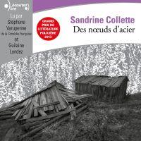 Des noeuds d'acier | Collette, Sandrine. Auteur