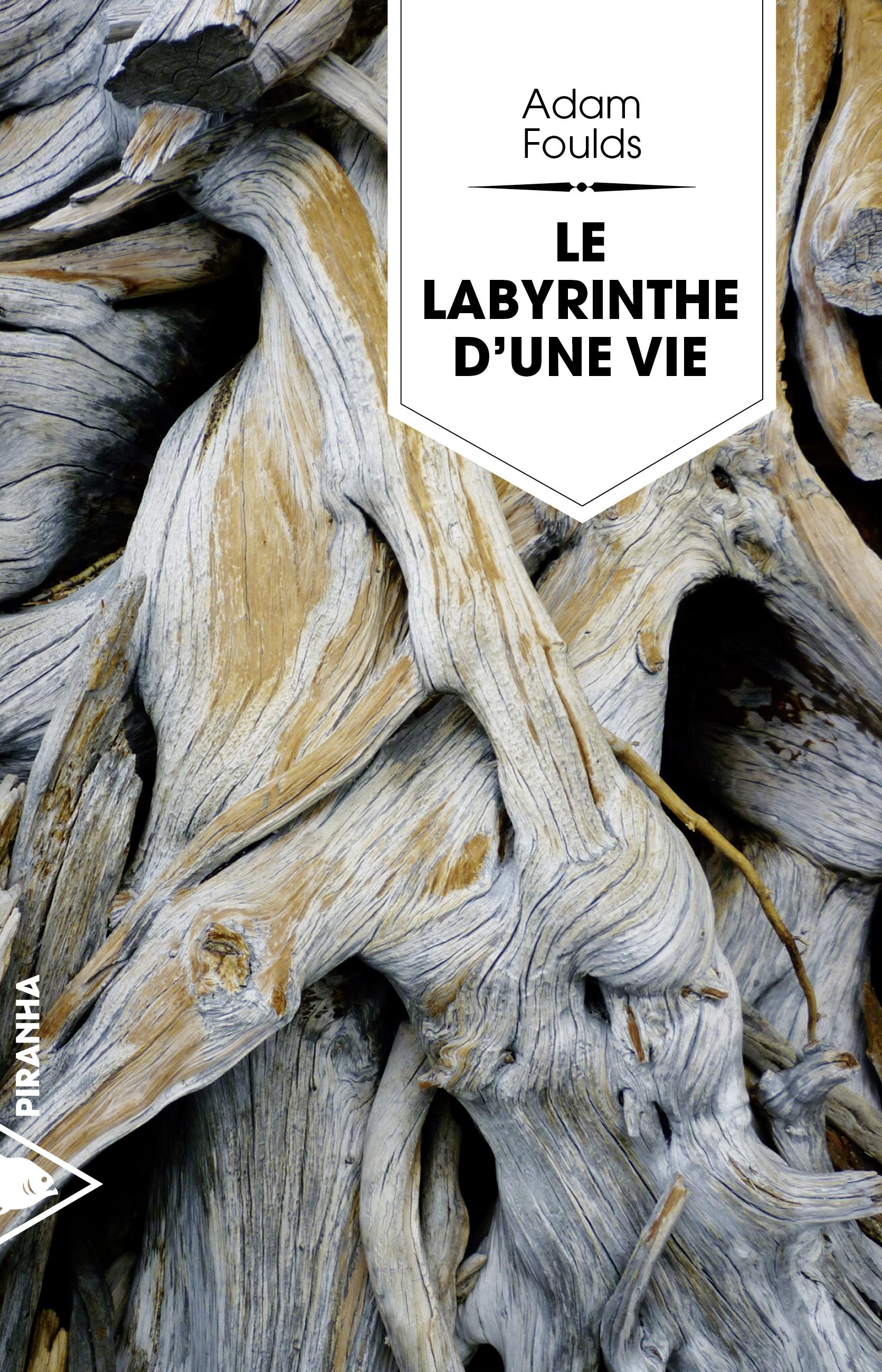 Le labyrinthe d'une vie | FOULDS, Adam