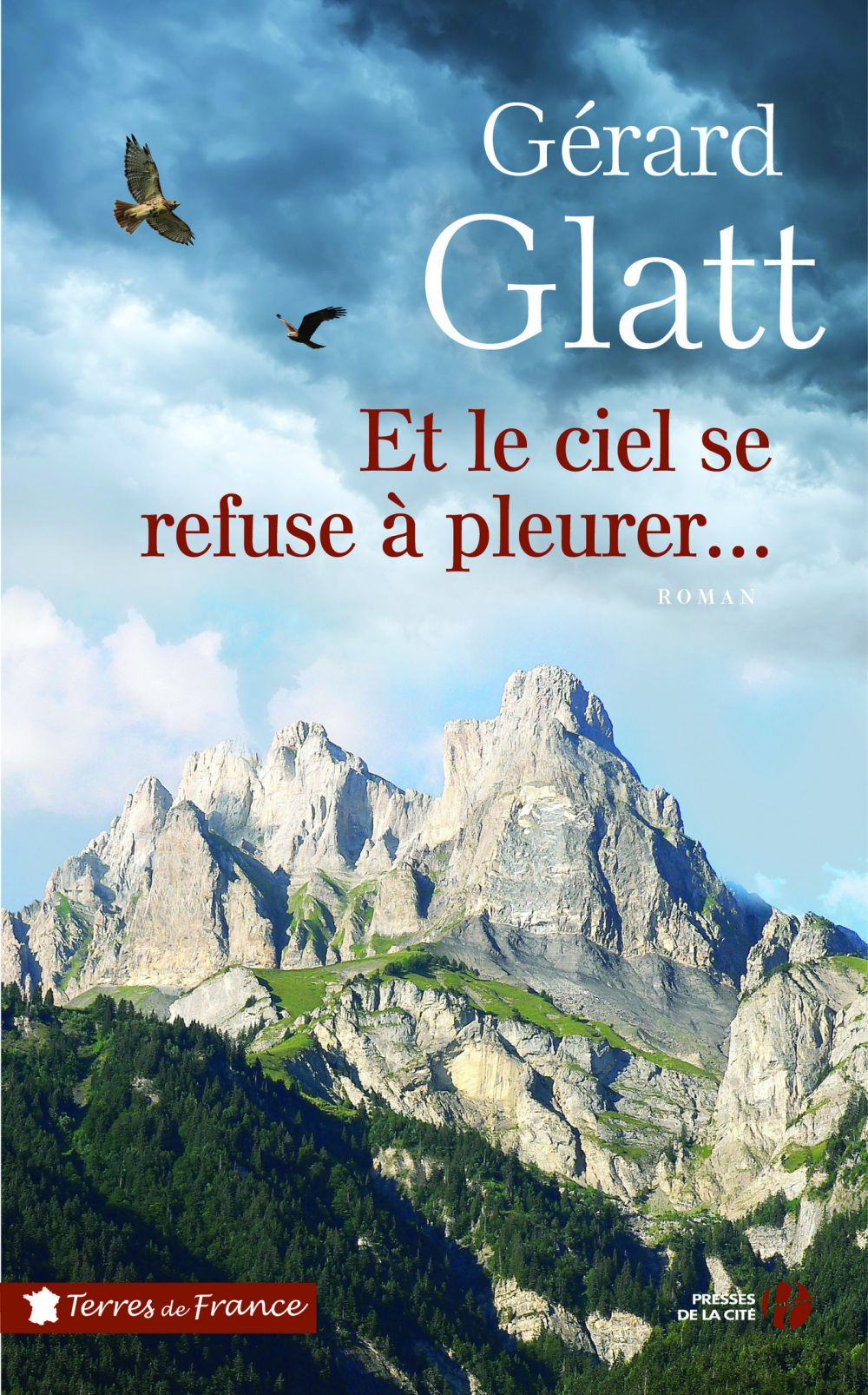 Et le ciel se refuse à pleurer | GLATT, Gérard. Auteur