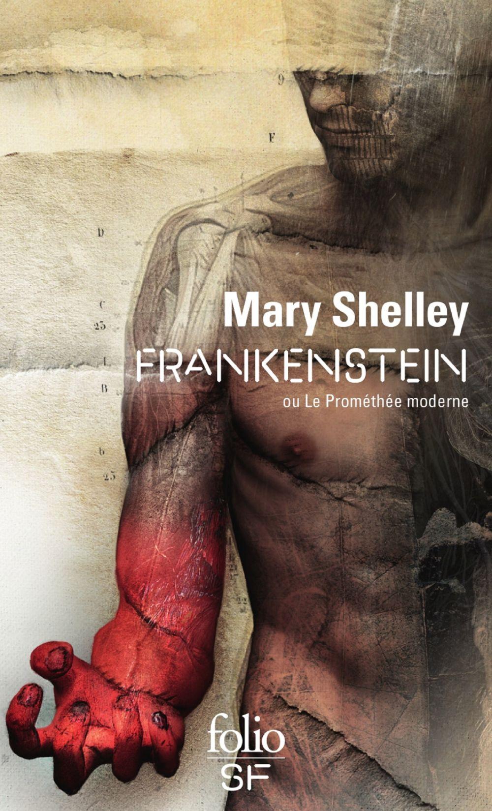 Frankenstein ou Le Prométhée moderne (nouvelle traduction) | Shelley, Mary Wollstonecraft (1797-1851). Auteur