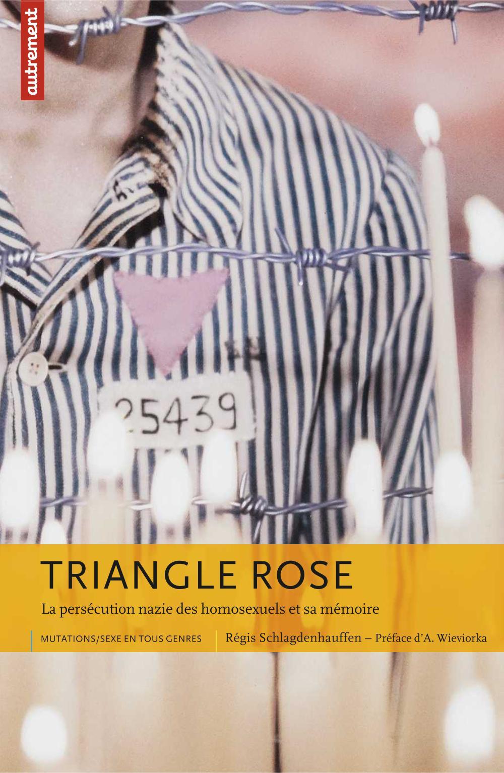 Triangle rose, LA PERSÉCUTION NAZIE DES HOMOSEXUELS ET SA MÉMOIRE