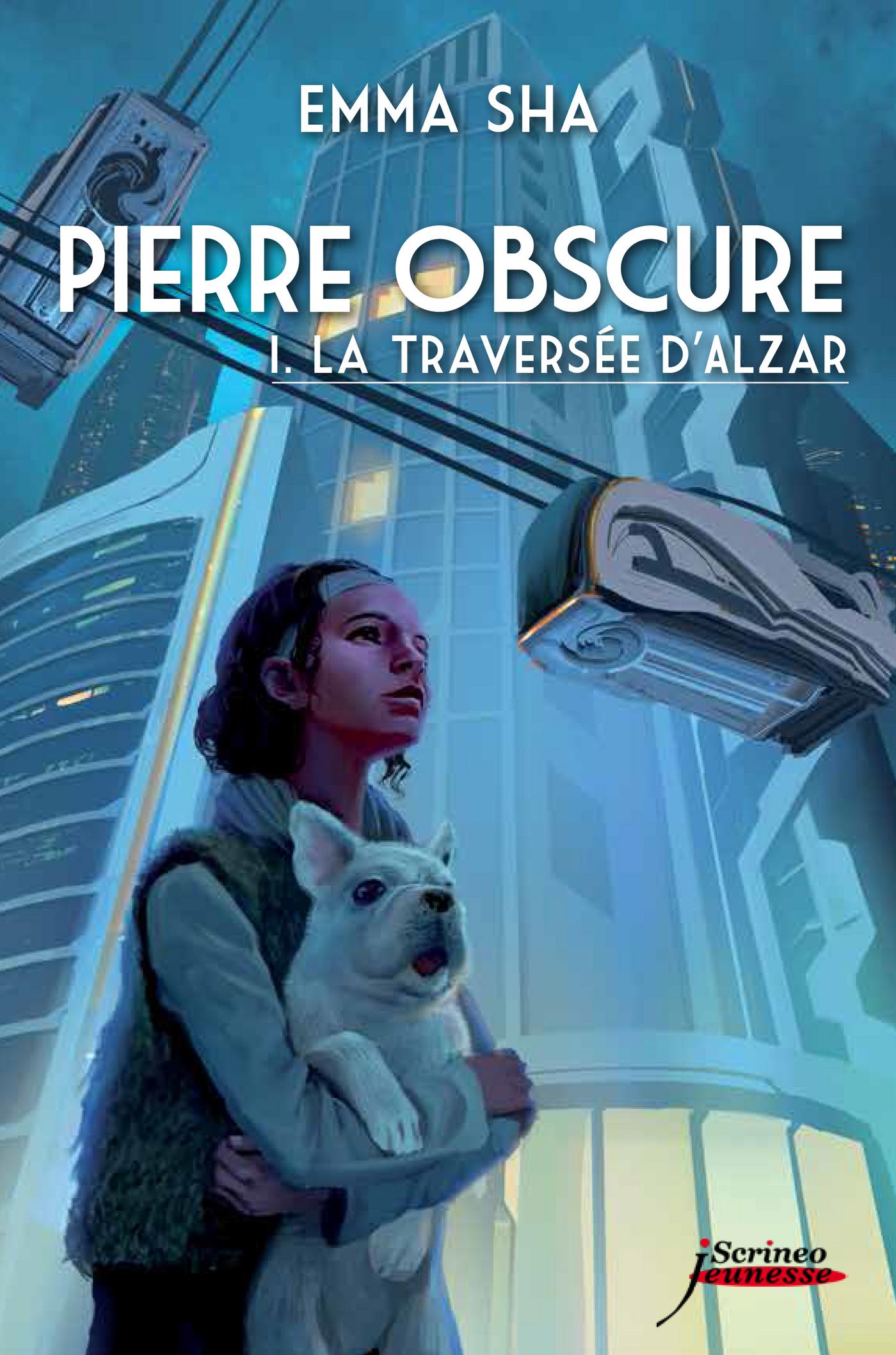 Pierre obscure - tome 01 : La traversée d'Alzar