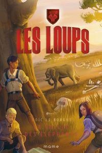 Cover image (La vallée des éléphants)