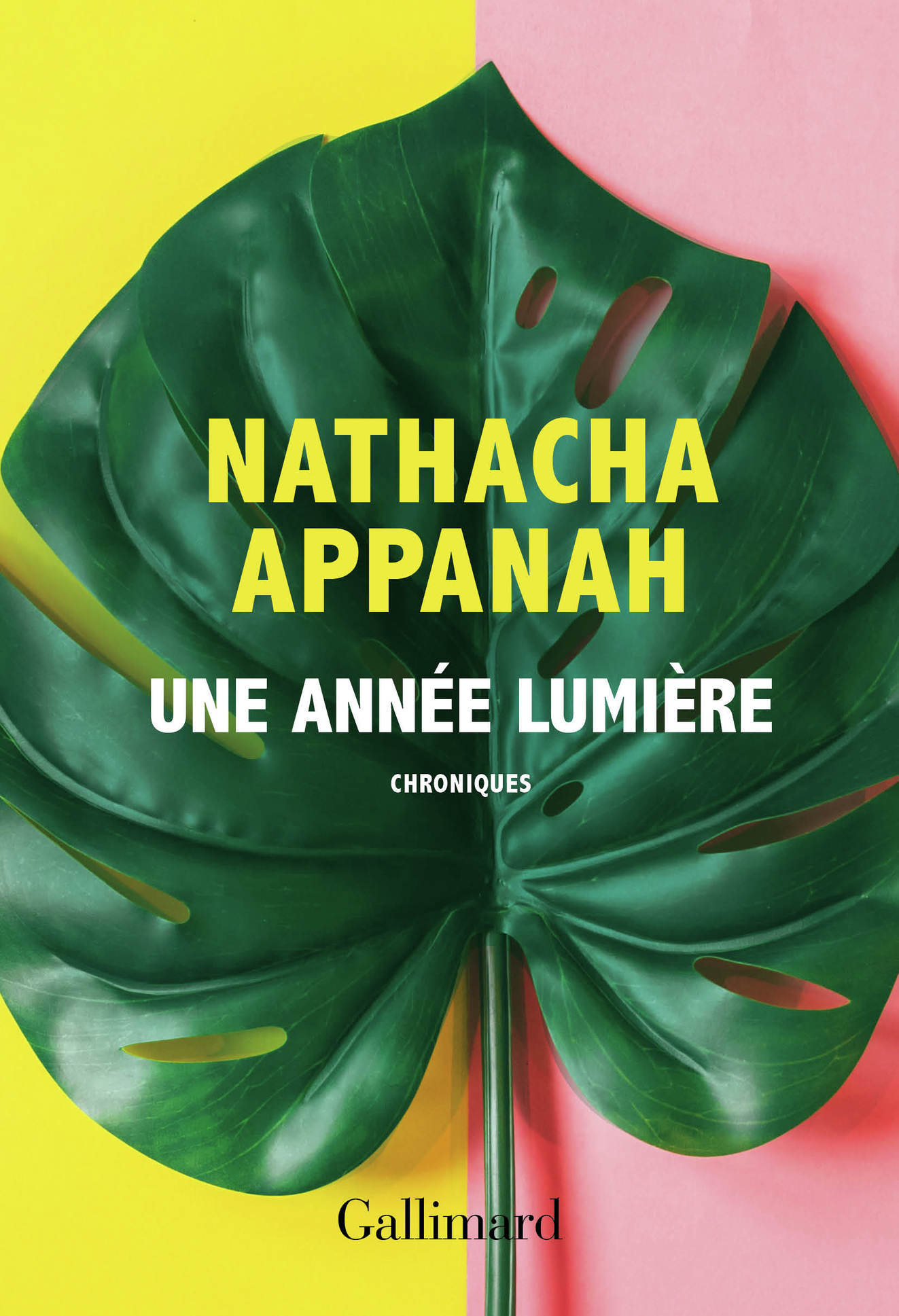 Une année lumière | Appanah, Nathacha
