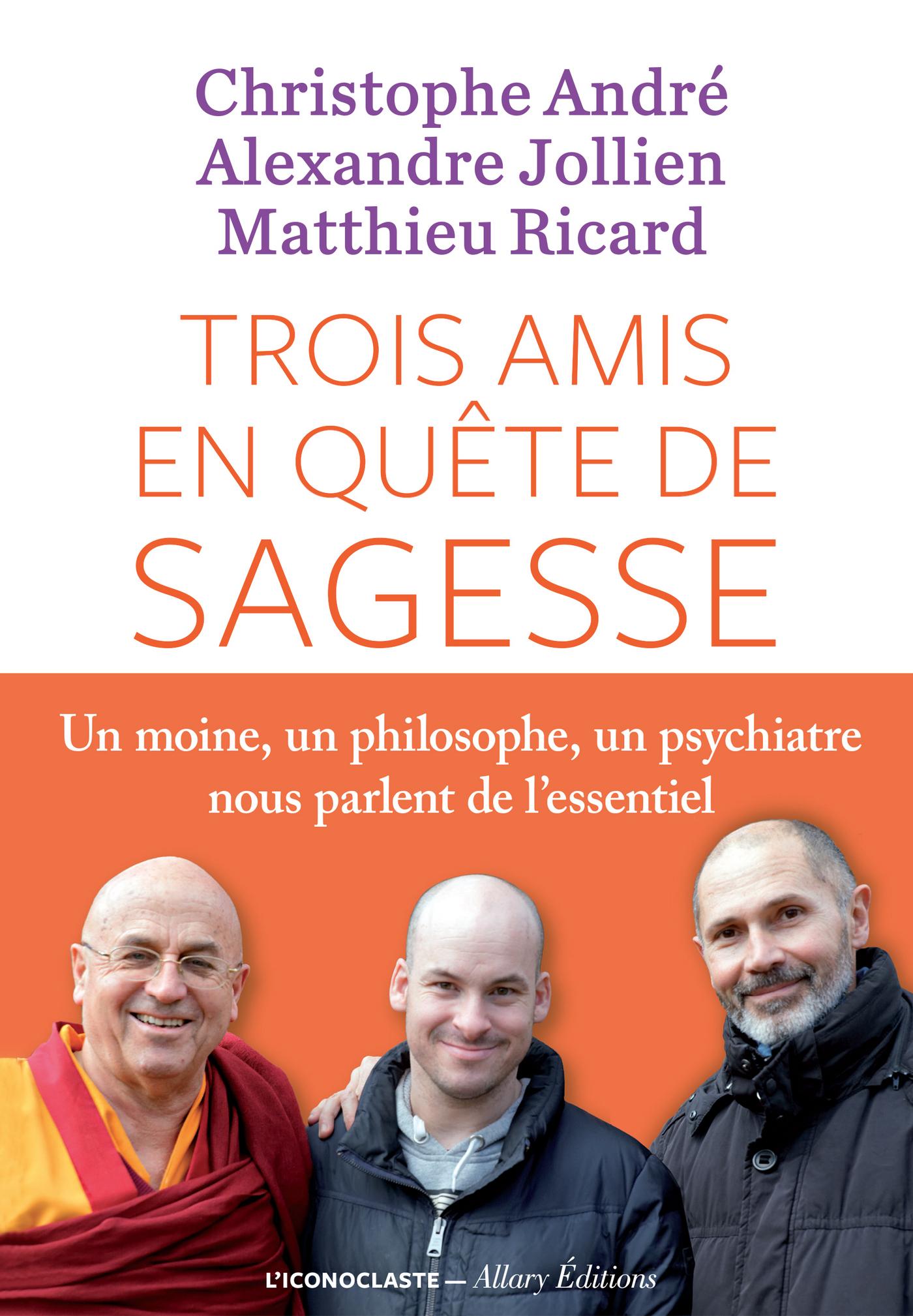 Trois amis en quête de sagesse, UN MOINE, UN PHILISOPHE, UN PSYCHIATRE NOUS PARLENT DE L'ESSENTIEL.
