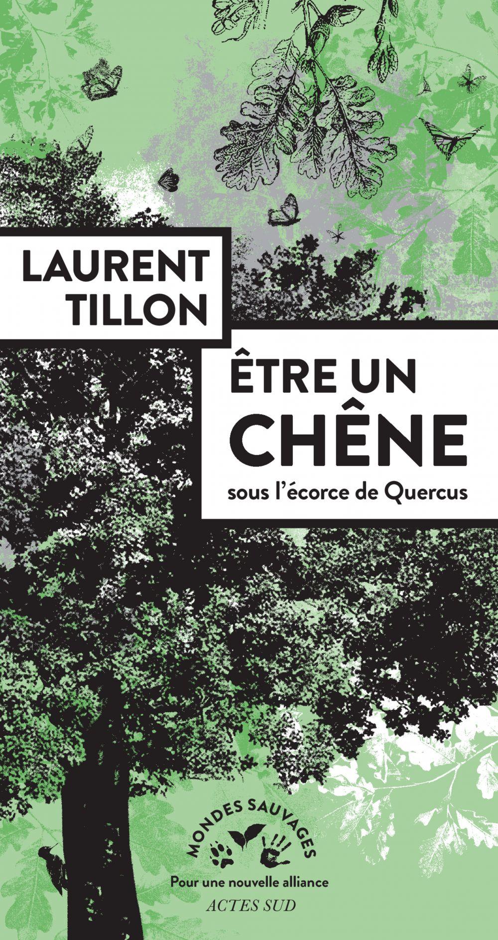 Être un chêne | Tillon, Laurent. Auteur