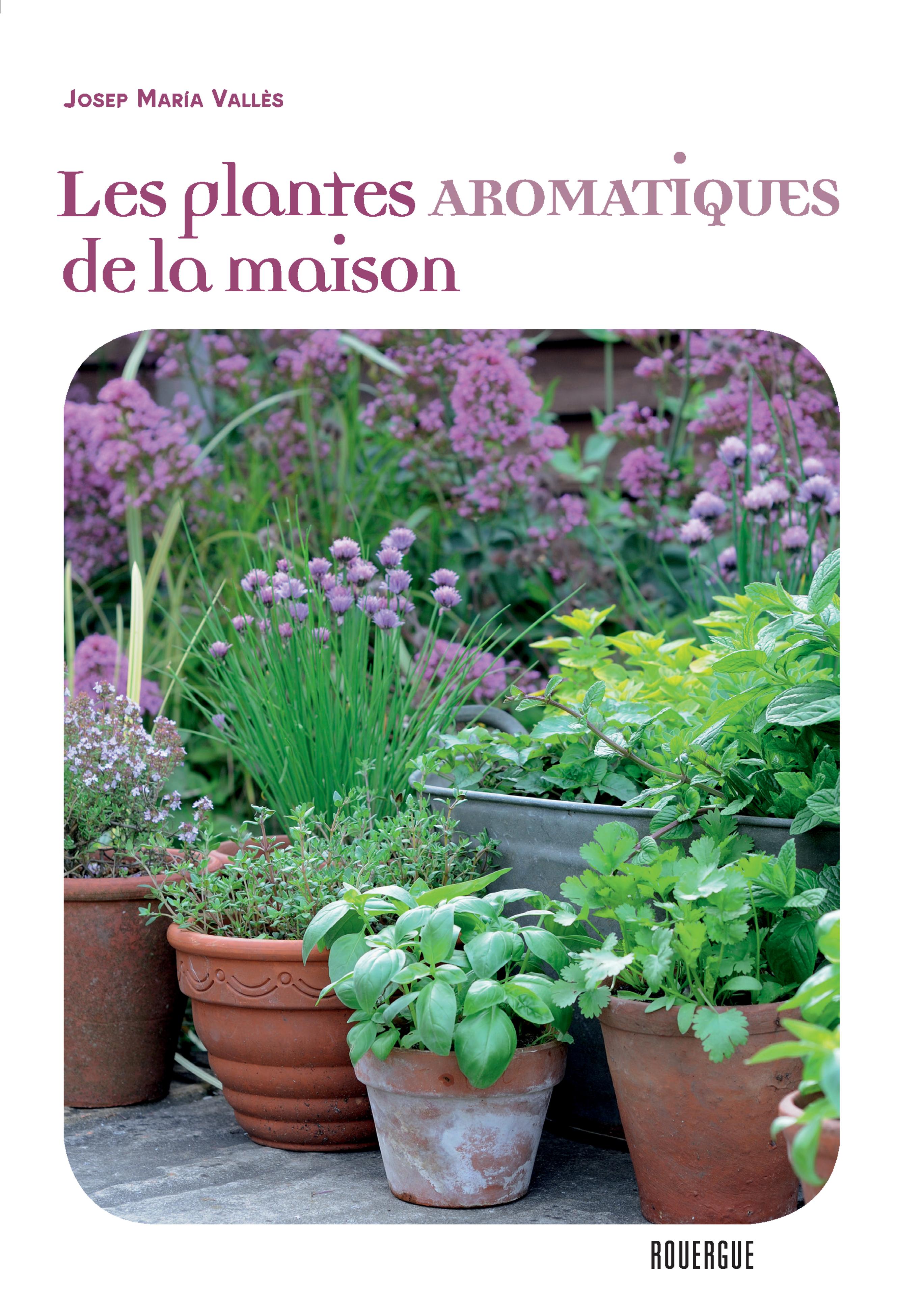 Les plantes aromatiques de la maison