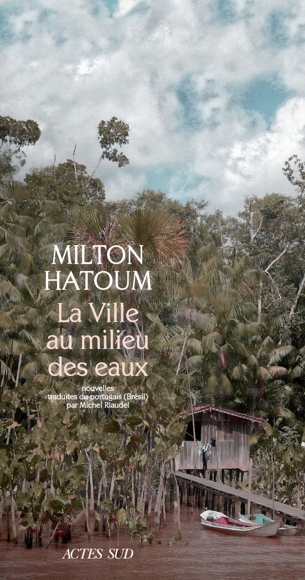La Ville au milieu des eaux | Hatoum, Milton. Auteur