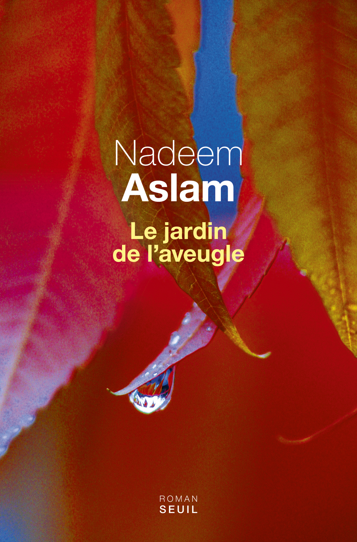 Le Jardin de l'aveugle | Aslam, Nadeem