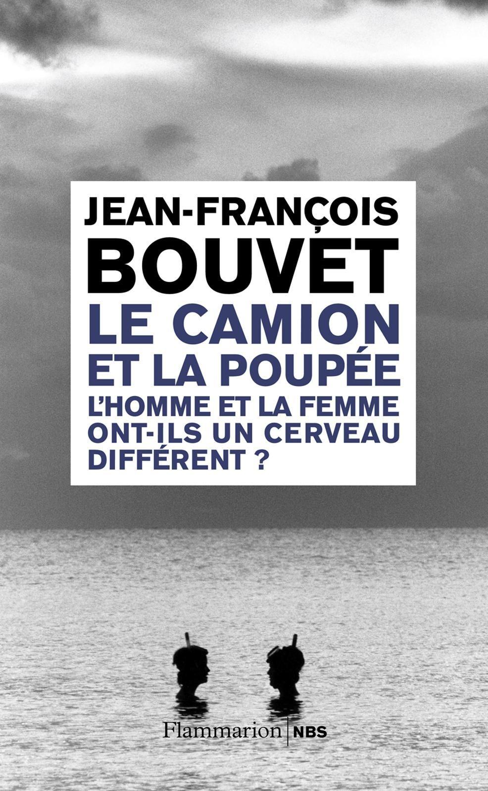 Le camion et la poupée | Bouvet, Jean-François. Auteur