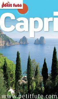 Capri 2013 Petit Futé