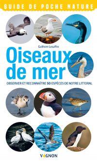 Oiseaux de mer
