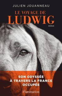 Le voyage de Ludwig