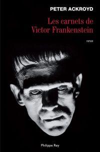 Les Carnets de Victor Frank...