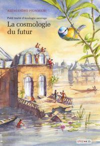 La Cosmologie du futur