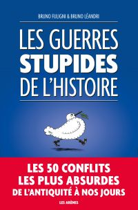 Image de couverture (Les Guerres stupides de l'Histoire)