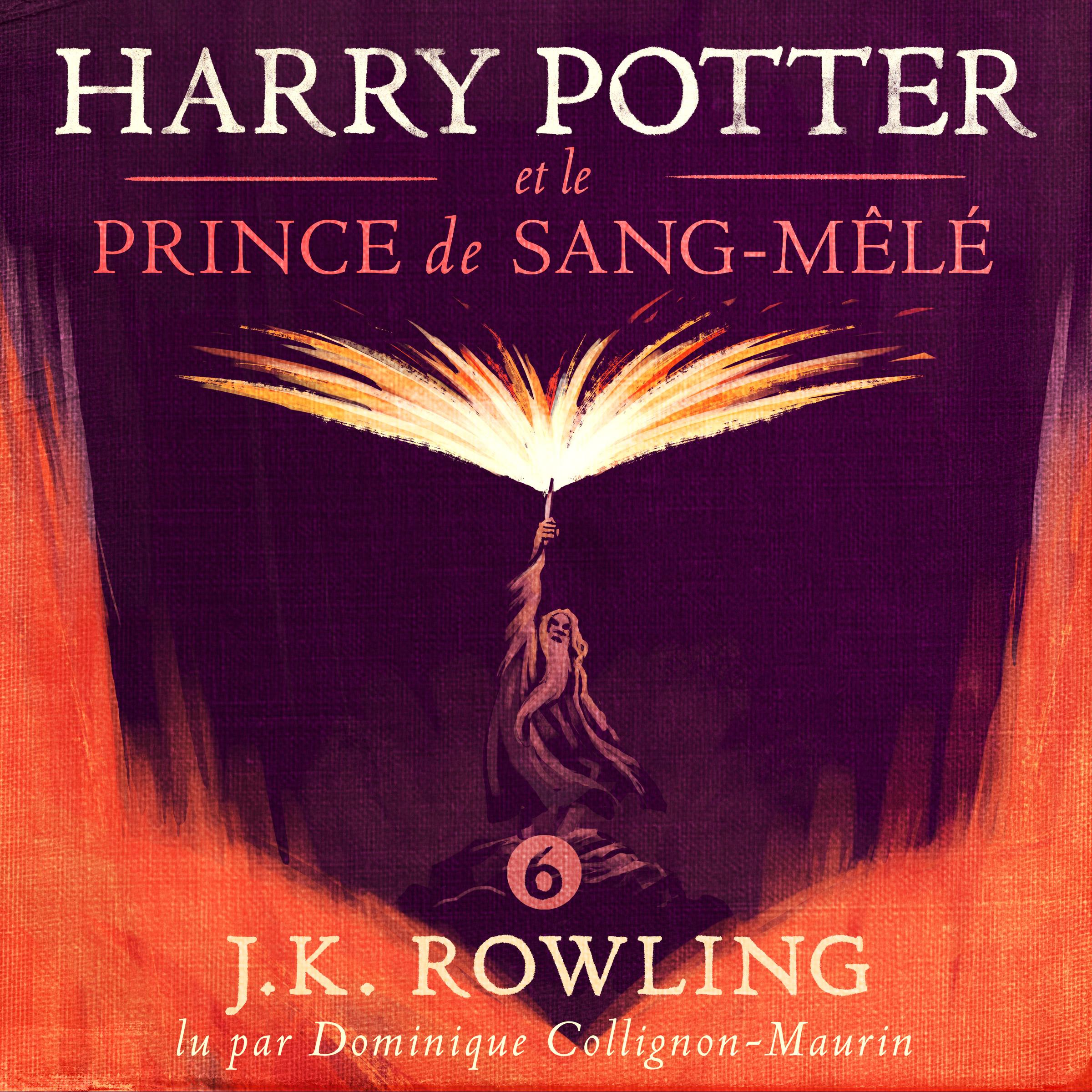 Harry Potter et le Prince d...