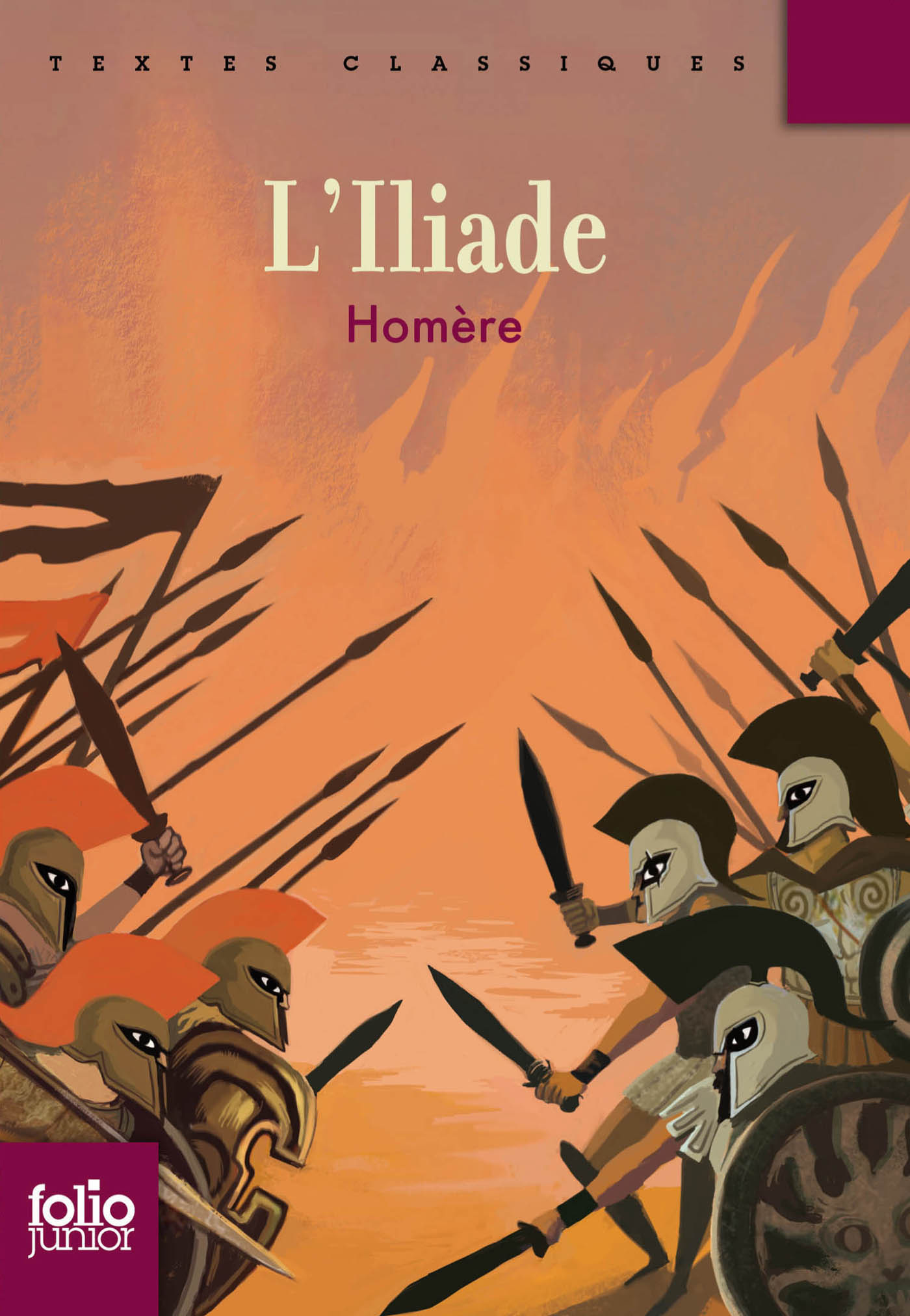 L'Iliade (édition enrichie)